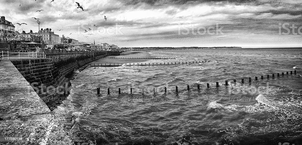 Seagulls flying over sea wall at Bridlington, UK (Mobile image) royalty-free stock photo