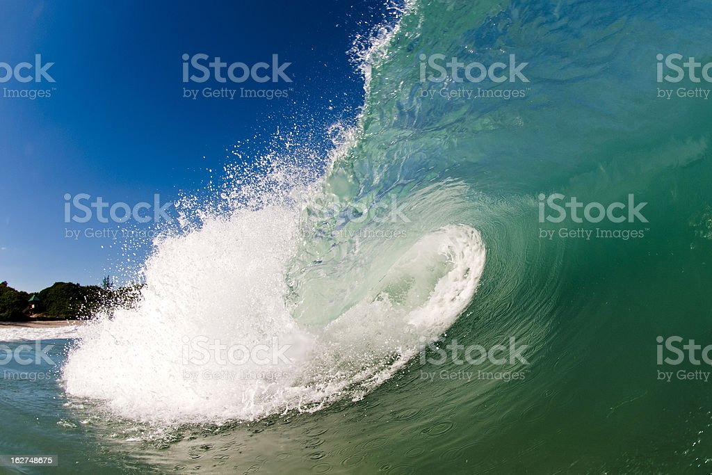 Seahawk Smash stock photo