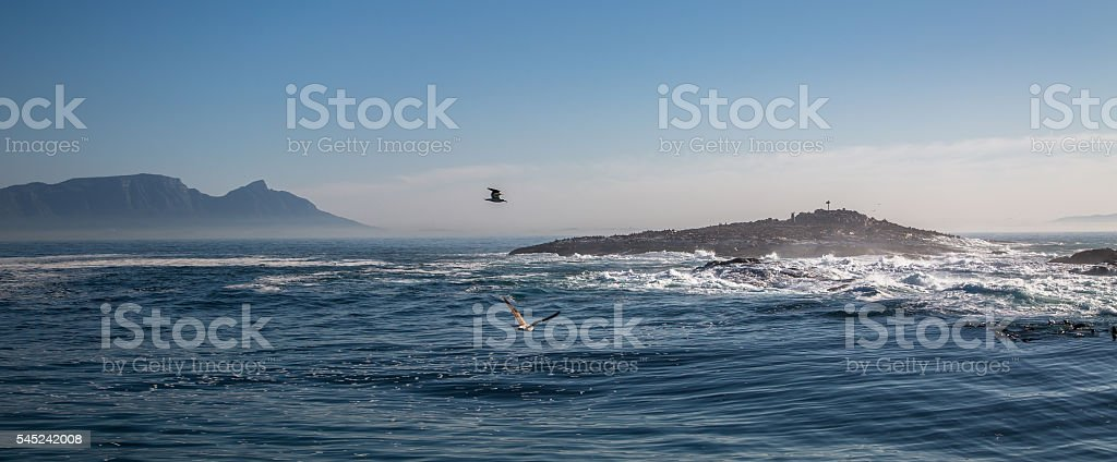 Seal Island and Table Mountain stock photo