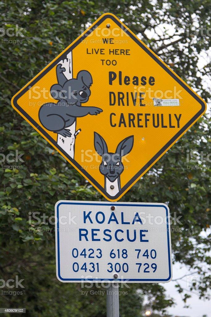 señal koale y canguros zbiór zdjęć royalty-free