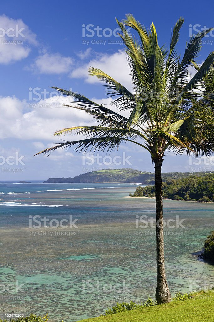 Sealodge and anini beach in Kauai stock photo