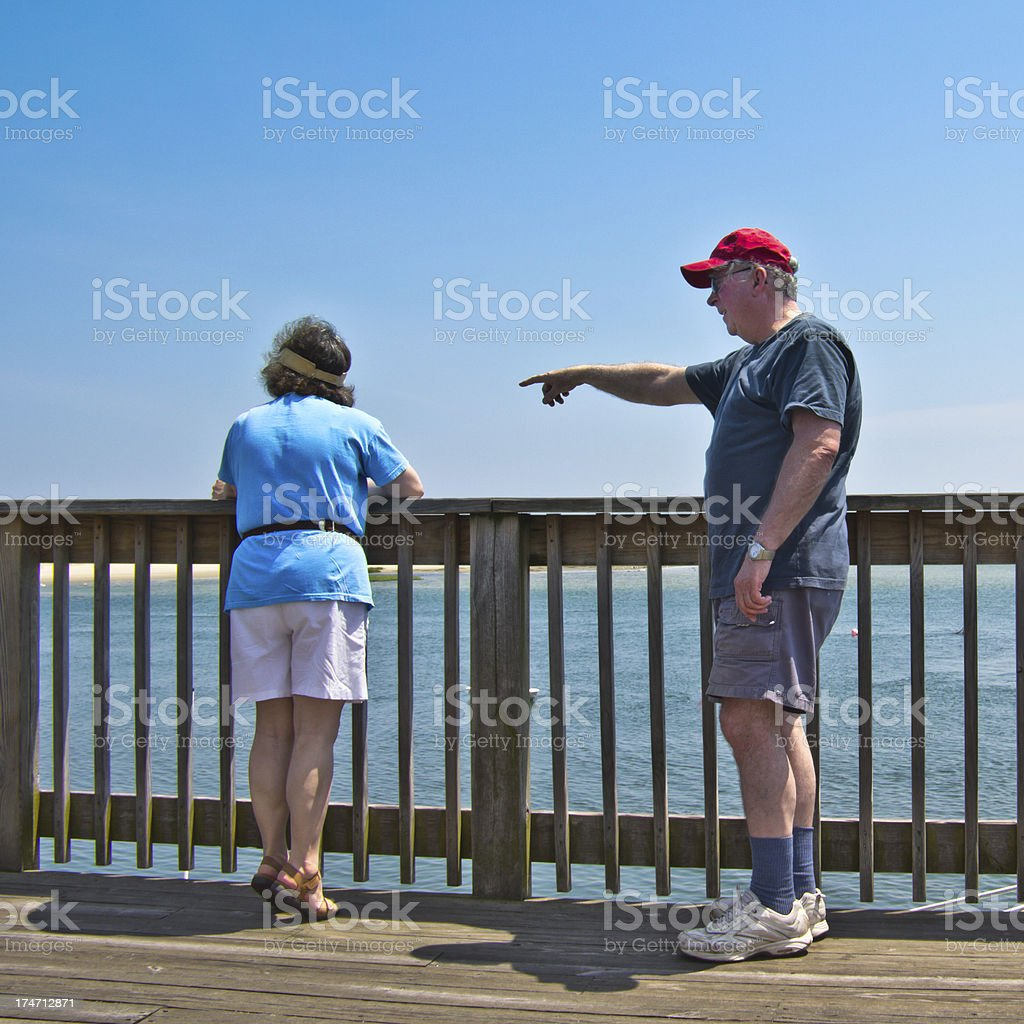 Seal-Watching from the Pier stock photo