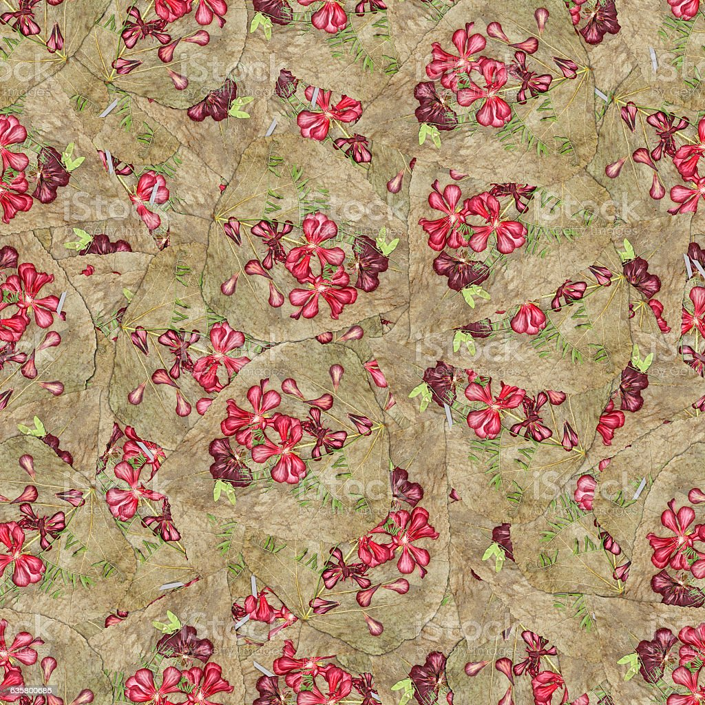 seamless background pattern texture of  huge leaves of poplar stock photo