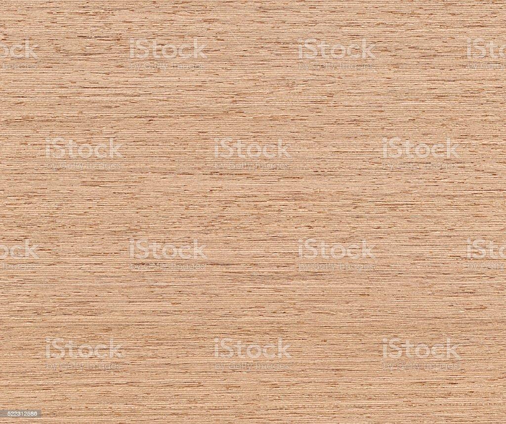 Seamless Elm Wood background stock photo