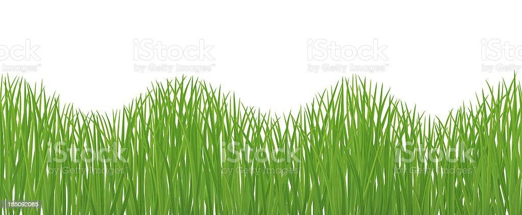 Seamless Grass royalty-free stock photo
