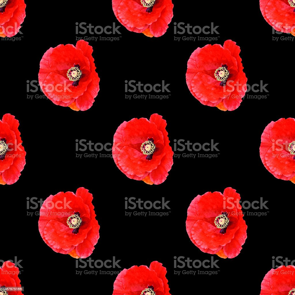 Seamless pattern red poppies vector art illustration