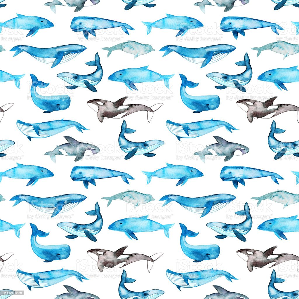 Seamless pattern with hand drawn blue whales. stock photo