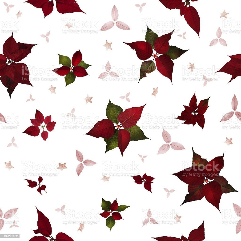 Seamless Poinsettia Christmas Flowers royalty-free stock photo