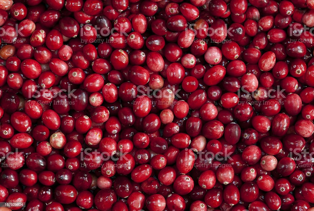 TILEABLE Seamless Red Cranberry Fruit Background stock photo