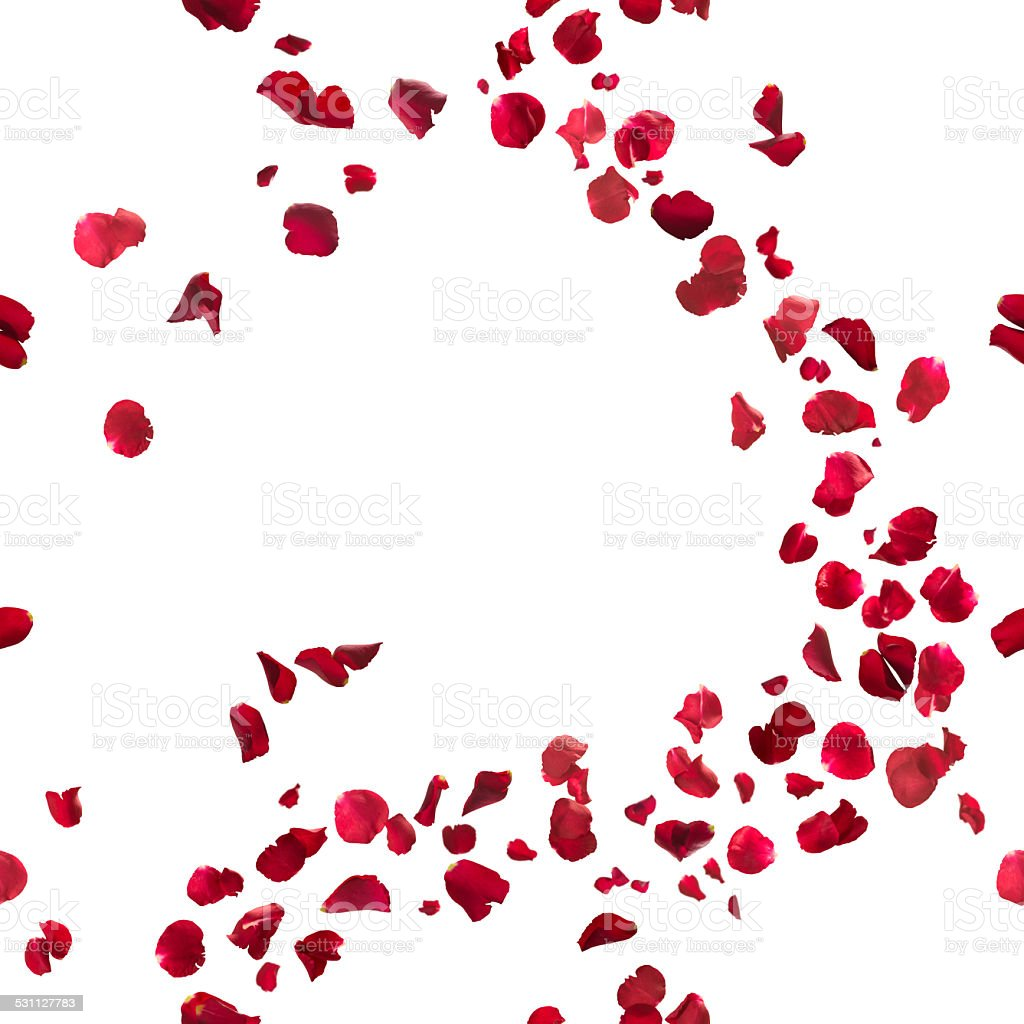 Seamless Red Rose Petals Breeze stock photo