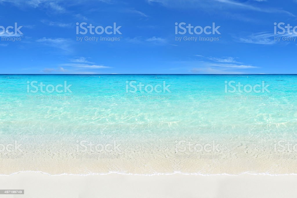 Seamless Tropical Beach stock photo