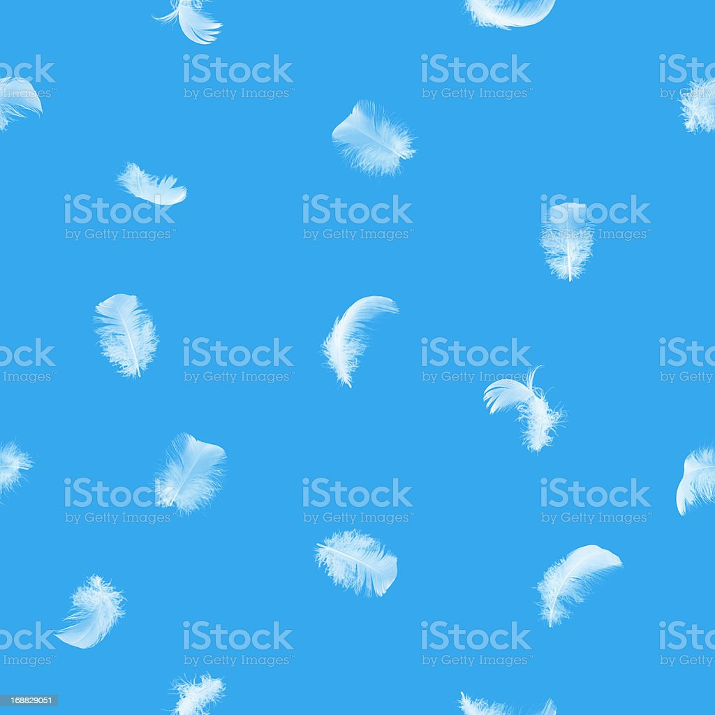 Seamless white feathers on blue stock photo