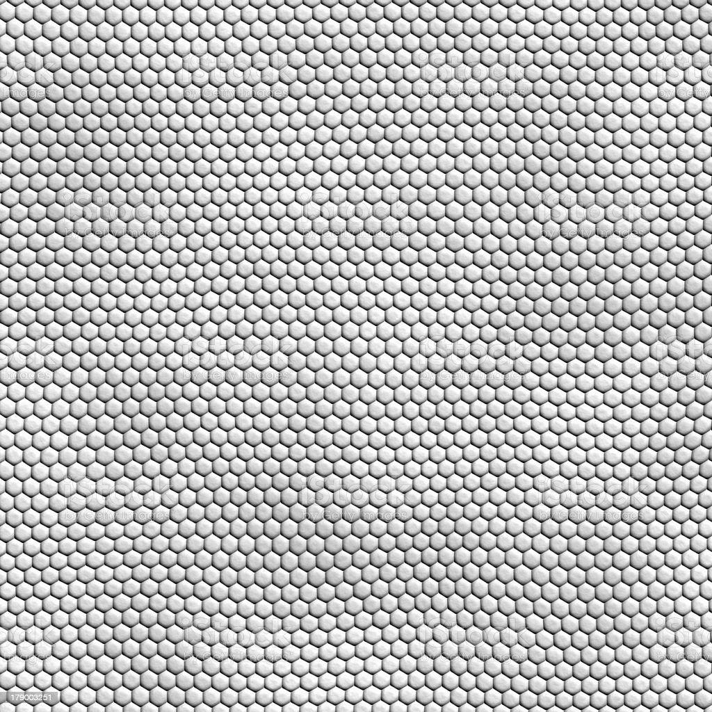 seamless white snakeskin texture royalty-free stock photo