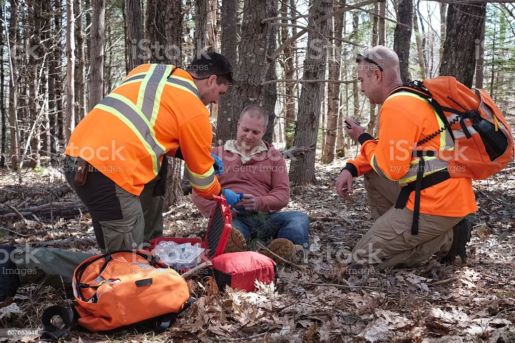 Search and Rescue team in the forest, Nova Scotia, Canada. stock photo