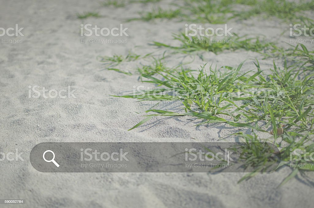 Search box. Web Online Browsing Searching Concept. stock photo