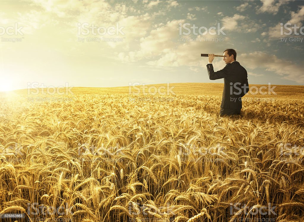 Searching for the new opportunites stock photo