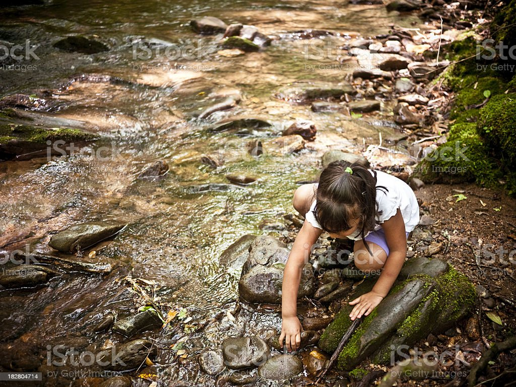 searching in the river royalty-free stock photo