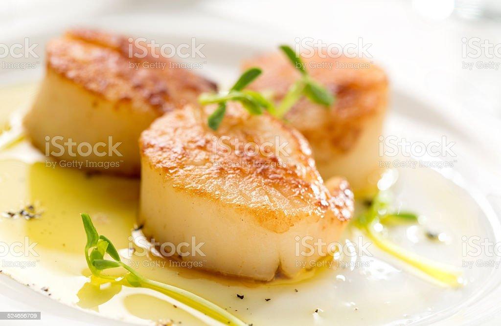 Seared Scallops stock photo