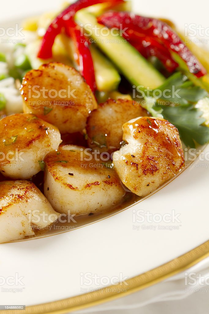 Seared Scallops with Tarragon-Butter Sauce royalty-free stock photo