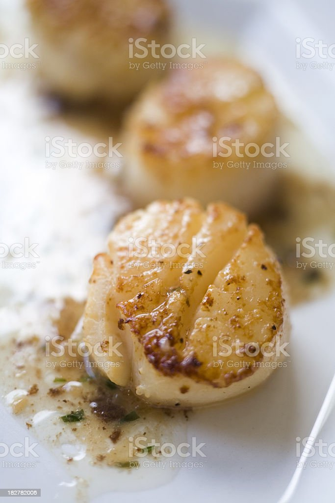 Seared scallops with truffle herb butter stock photo