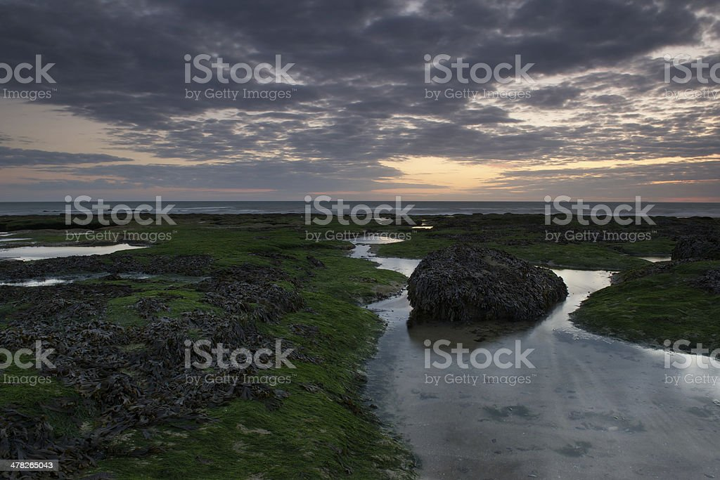 Seascape at dawn royalty-free stock photo