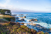 Seascape of Monterey Bay and cypress trees at Sunset, California