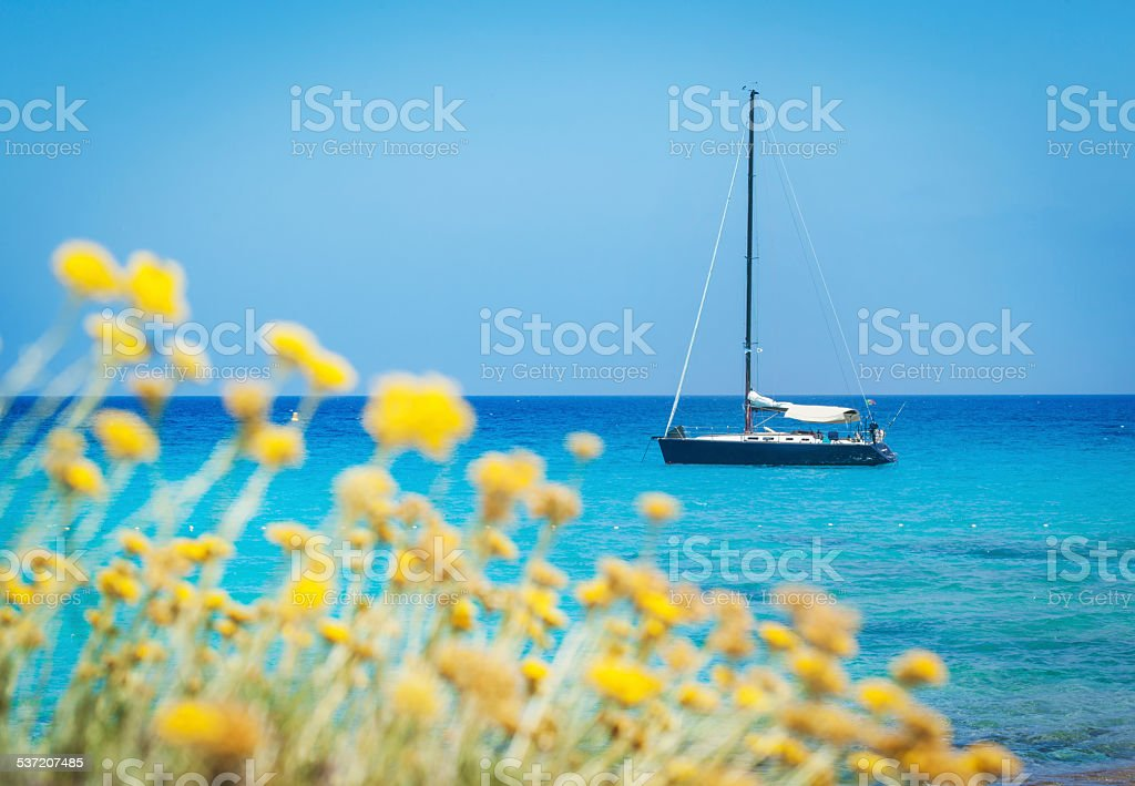 Seascape With Boat And Blurred Flowers In The Foreground stock photo