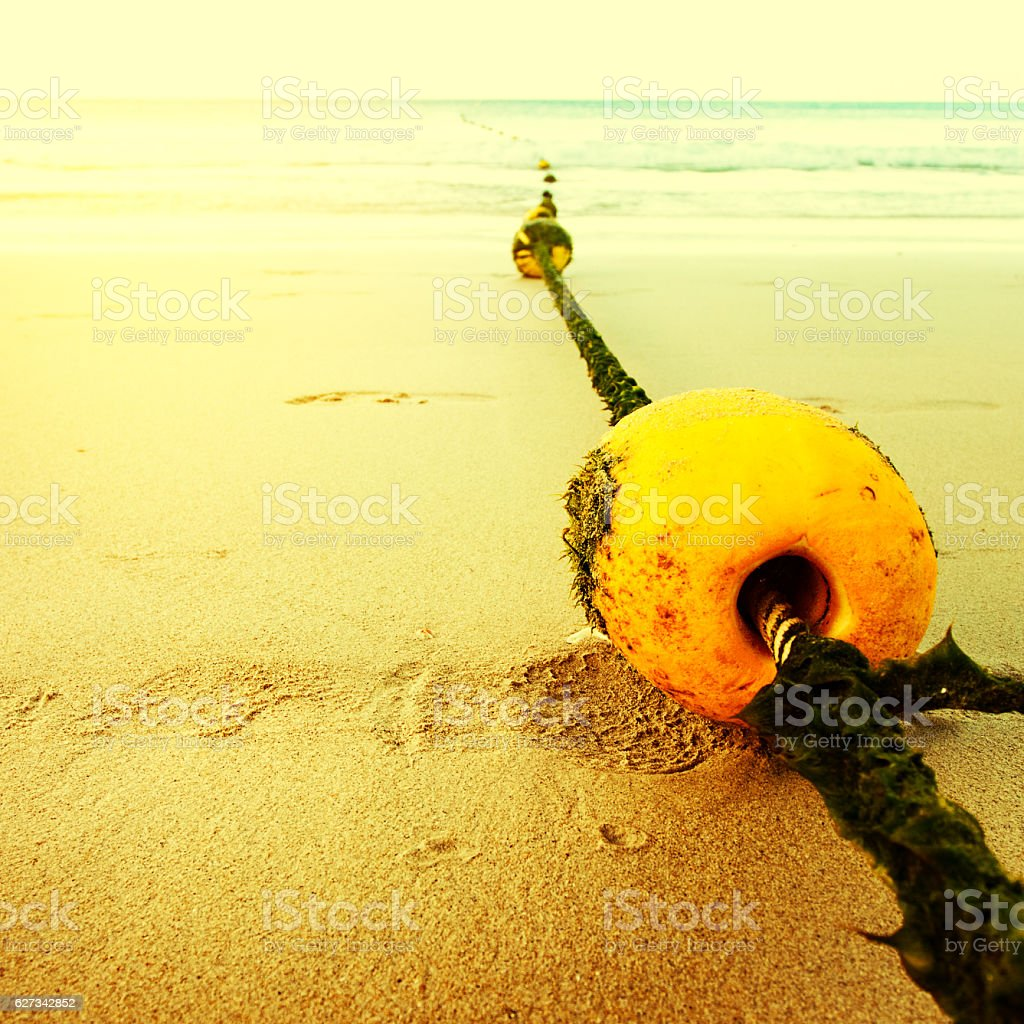Seascape with rope and buoy in seaweeds stock photo