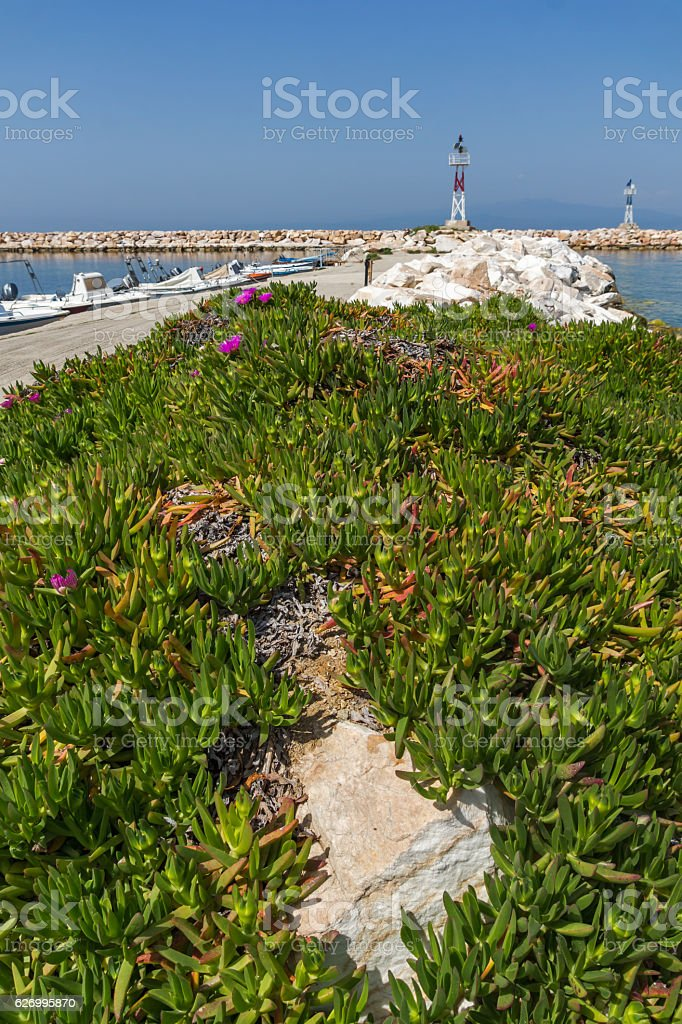 Seascape with Spring flowers and pier in Skala Sotiros, Thassos stock photo
