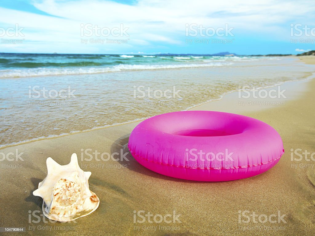Seashell and tube stock photo