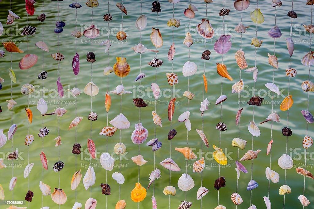 Seashell curtain background stock photo