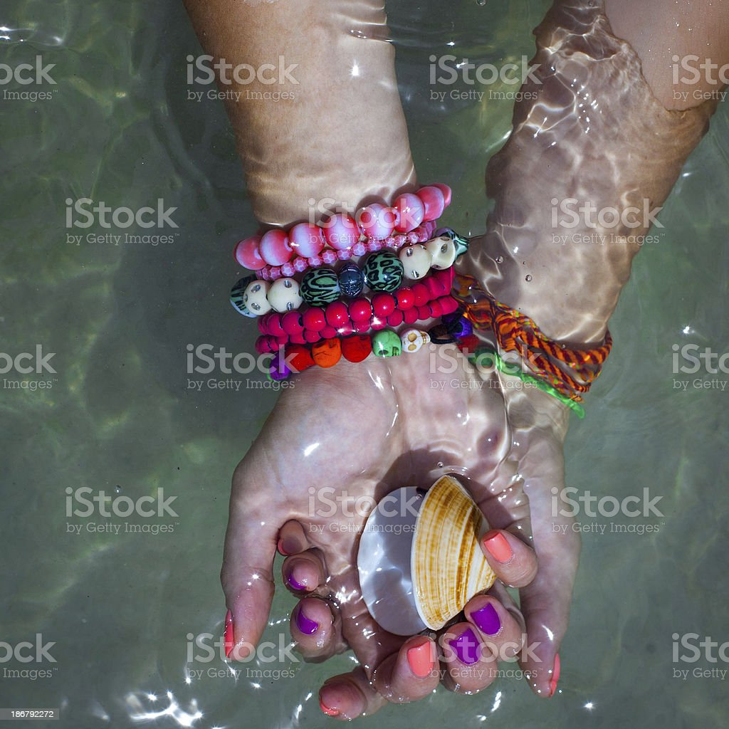 Seashell in a woman hands stock photo