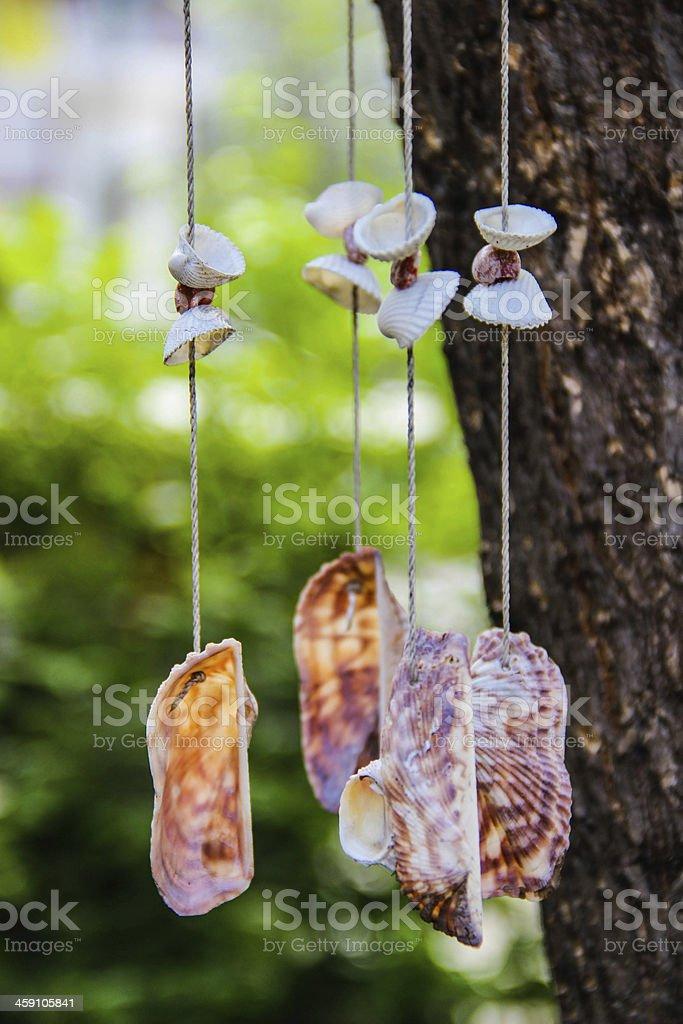 seashell mobile stock photo