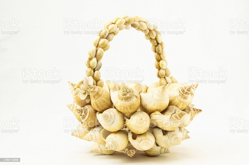 Seashell Vase Closeup royalty-free stock photo