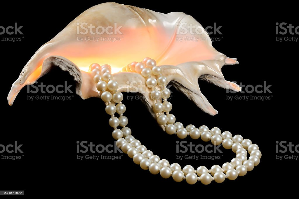 Seashell with a pearl necklace stock photo