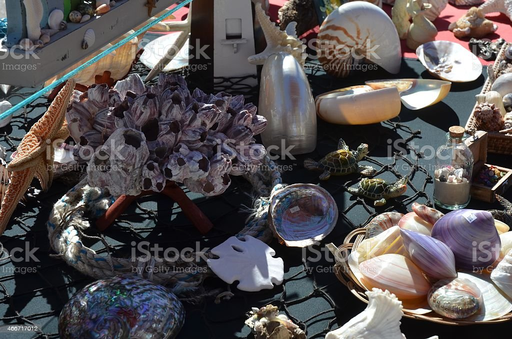Seashells for sale at outdoor market in Palm Springs, California royalty-free stock photo