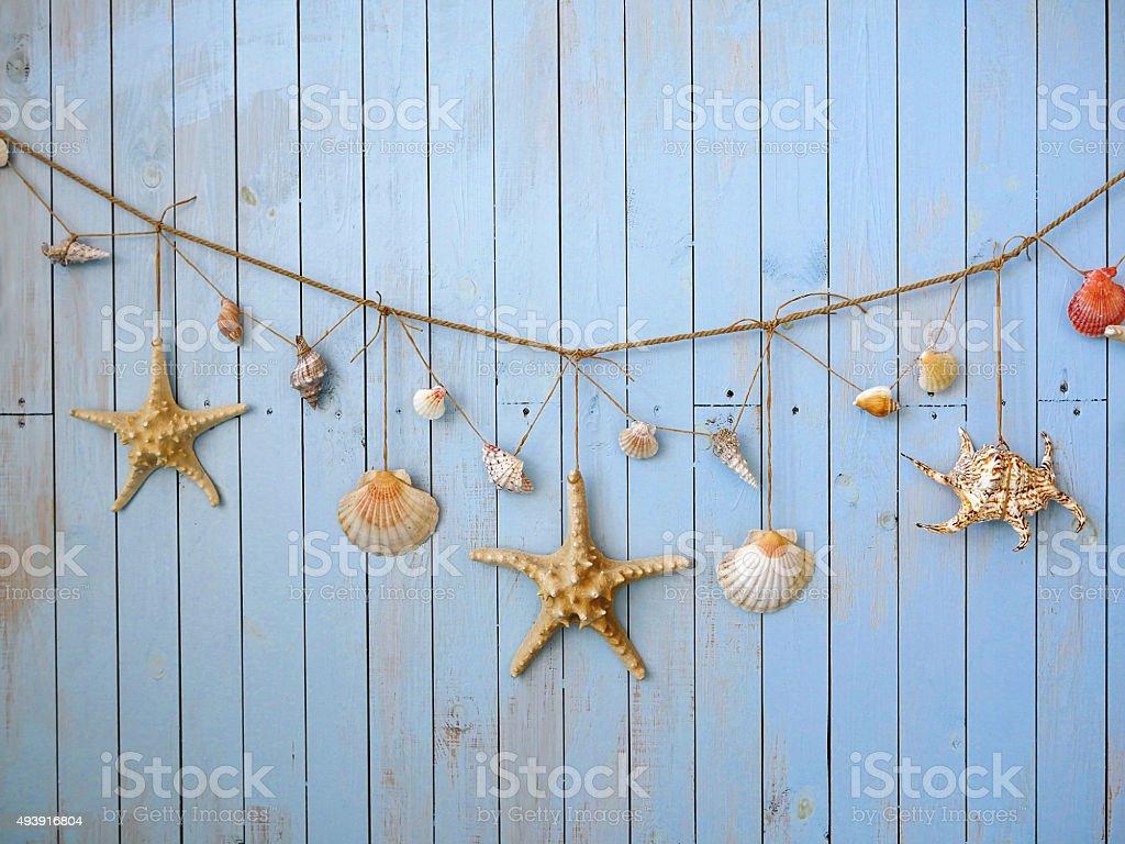 Seashells hanging on the rope stock photo