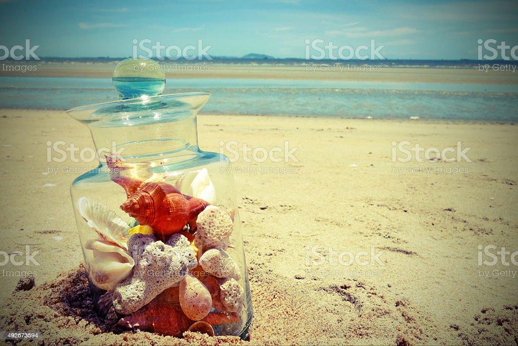 Seashells in glass jar stock photo