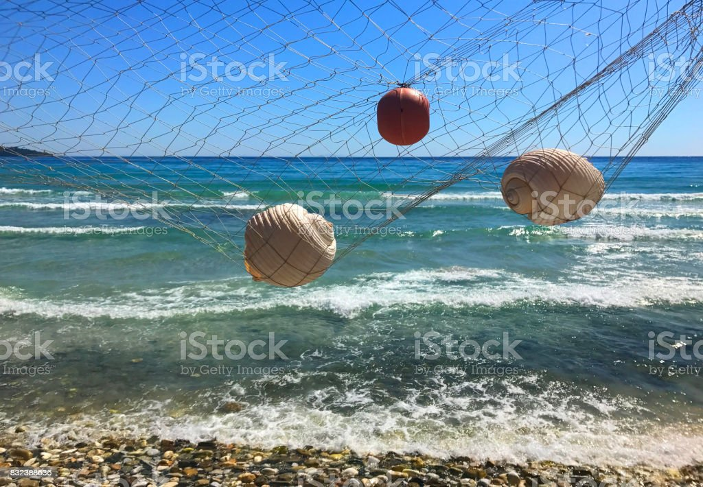 Seashells over the sea stock photo