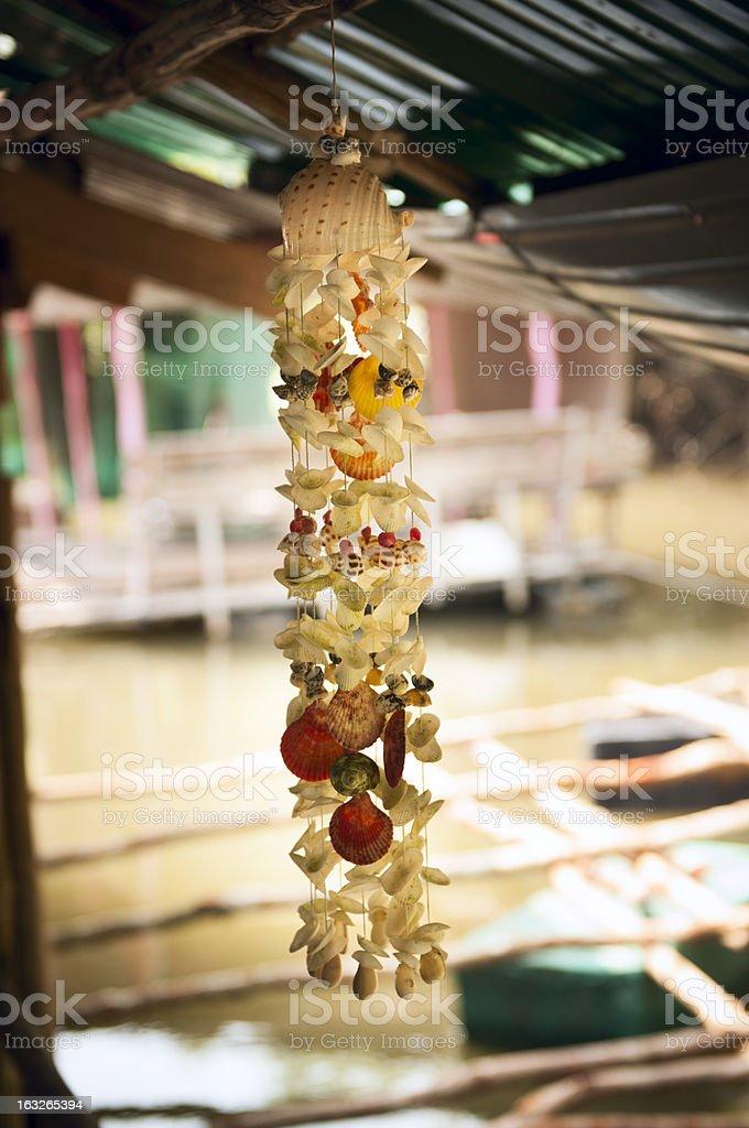 Seashells royalty-free stock photo