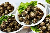 Seashells portions on plastic plates