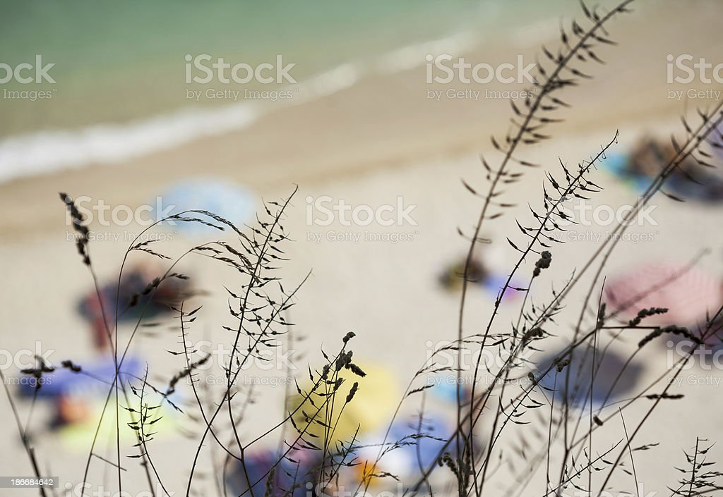 Seashore From Above With Blurred Bathers royalty-free stock photo