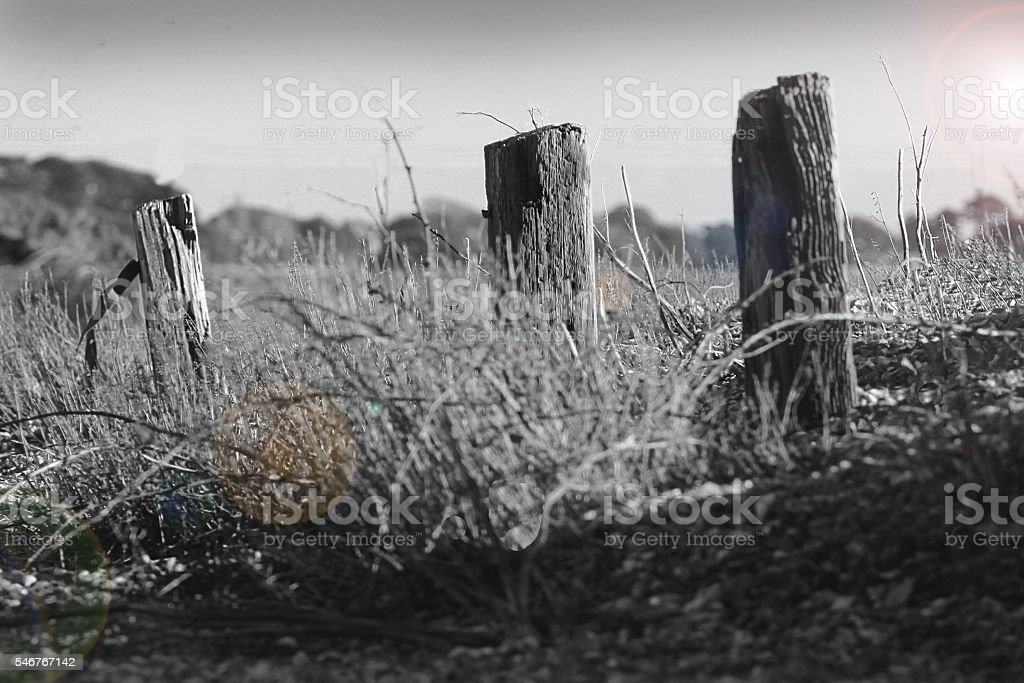 Seashore in Black and White stock photo