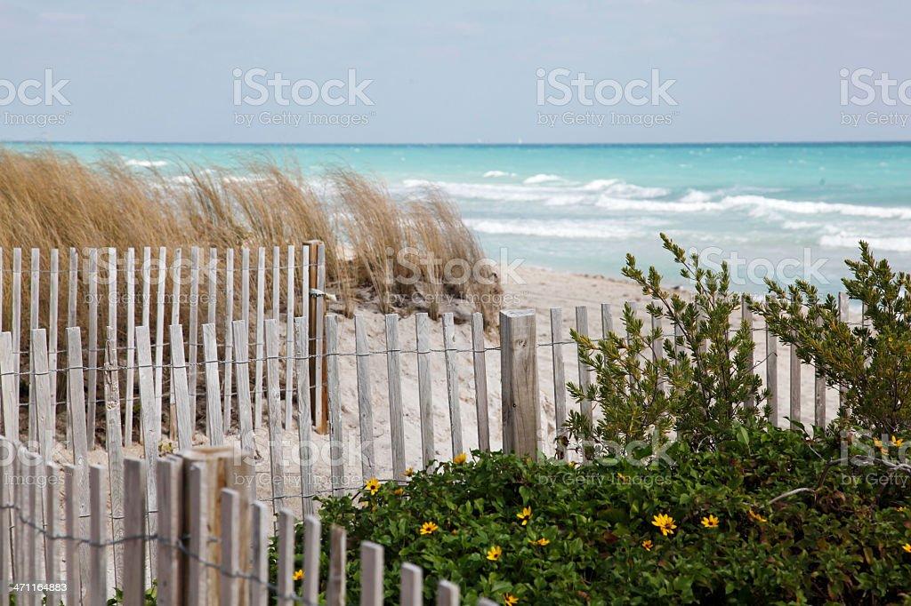 Seaside fence stock photo