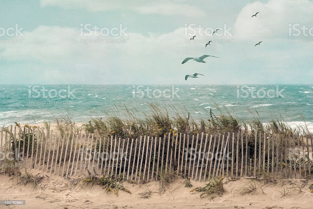 Seaside stock photo