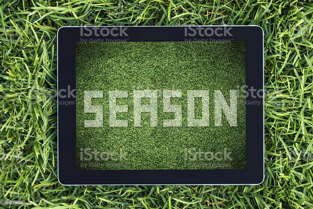 Season written on a soccer field stock photo