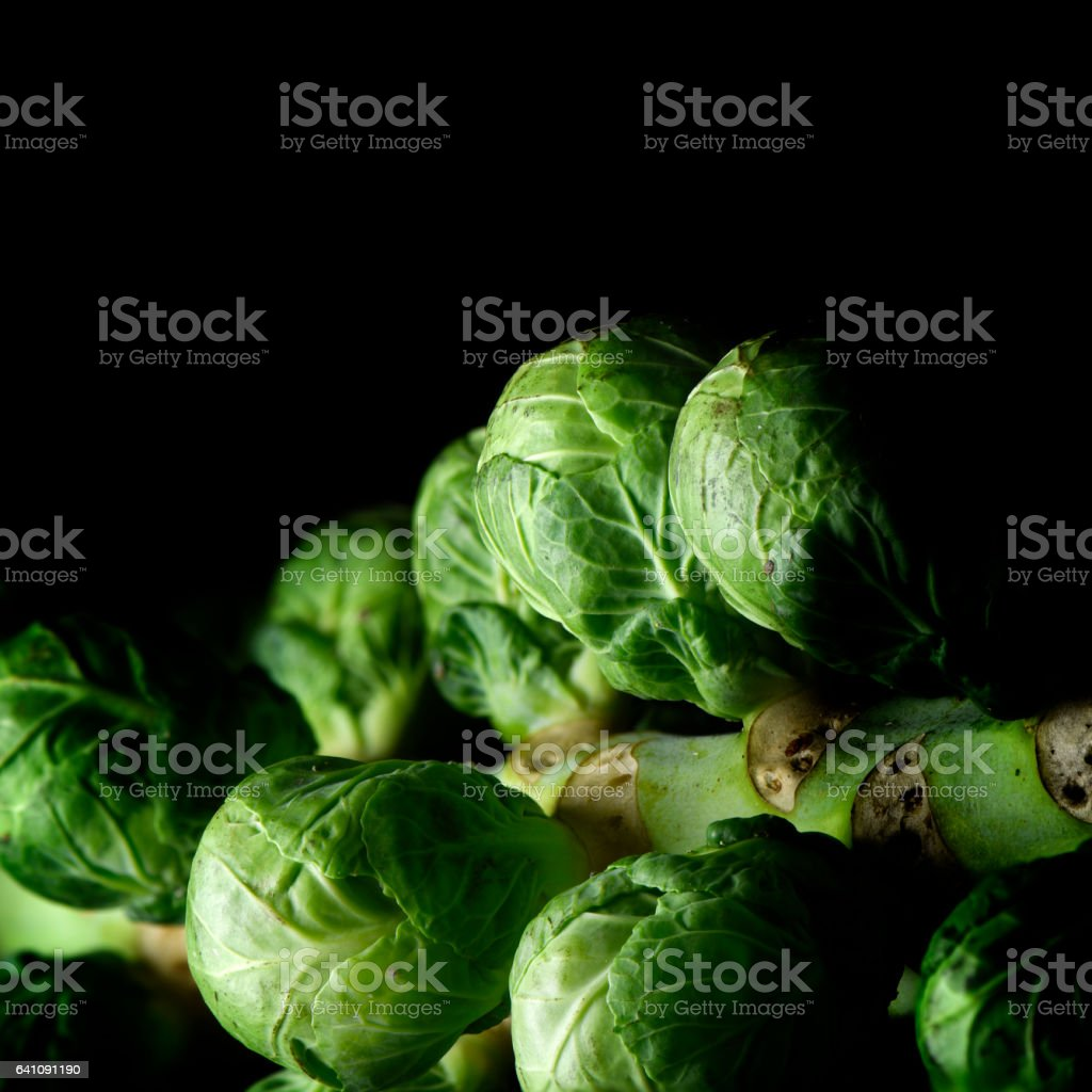 Seasonal Brussels Sprouts stock photo