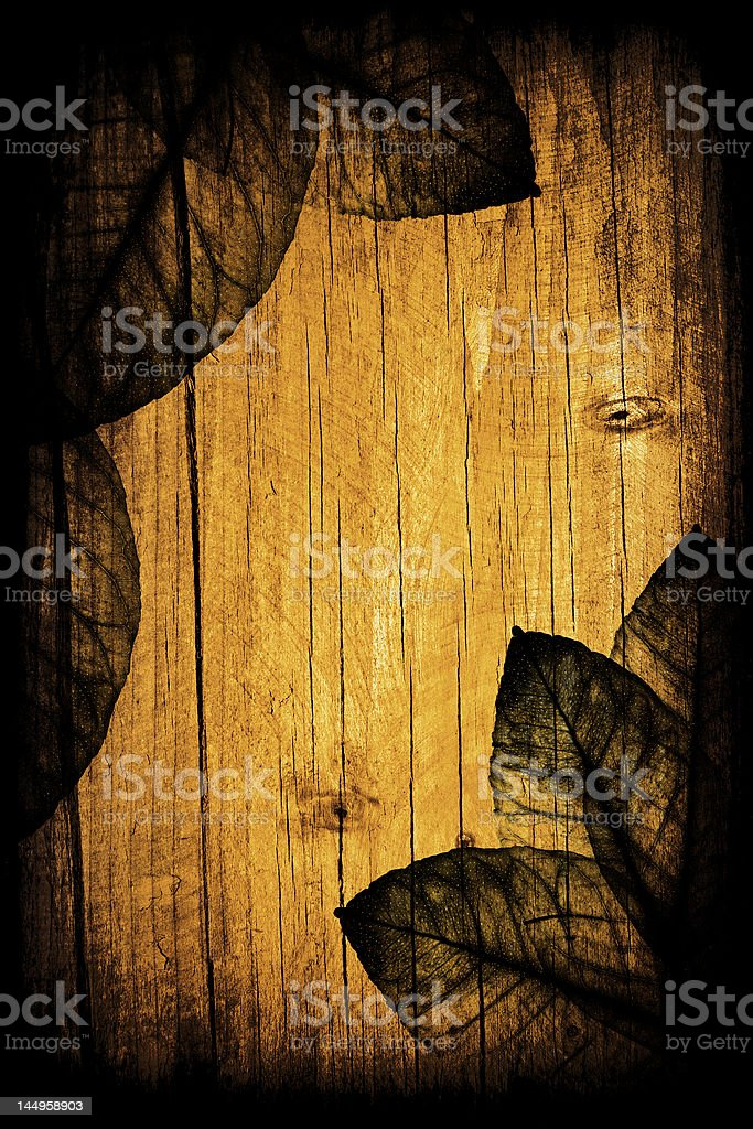 Seasonal floral wooden background royalty-free stock photo