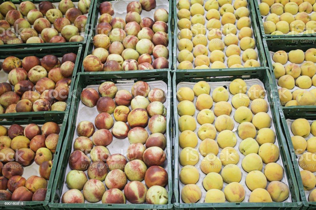Seasonal fruits stock photo