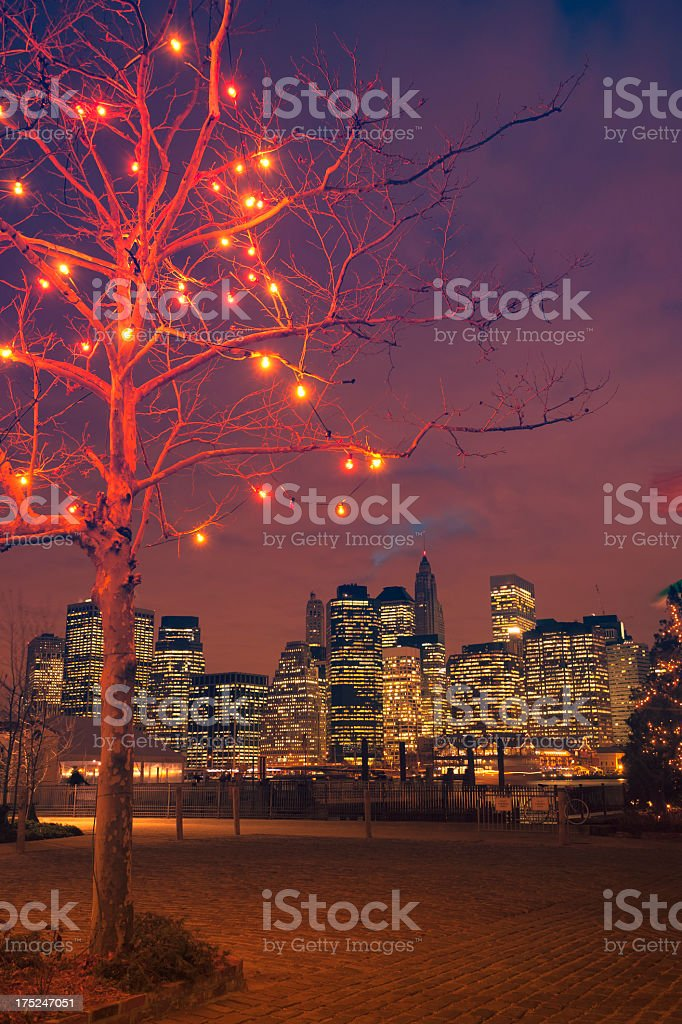 Seasonal lights on tree with skyline of Manhattan in background royalty-free stock photo
